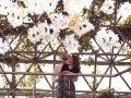 Four Seasons Limassol - Garden Court